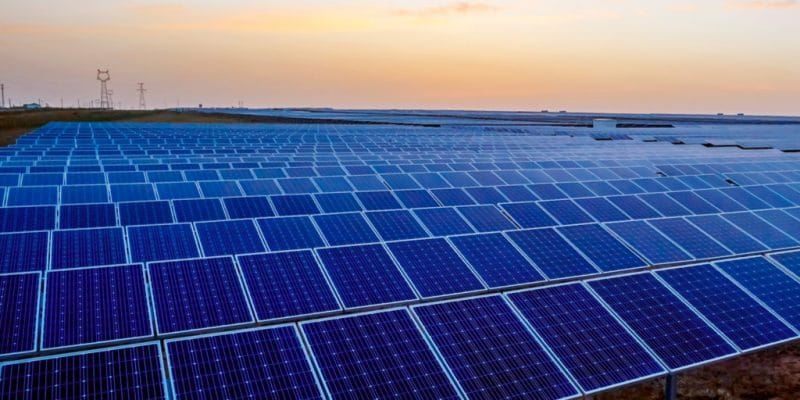 ZAMBIA: Xago and Blue Chip win $500 million contract for solar park©Jenson/Shutterstock