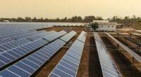 ZIMBABWE: Yaowei Technology allocates $15 million for solar energy development©Kampan/Shutterstock