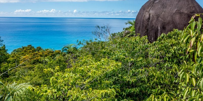 SEYCHELLES: Government and FAO invest $5 million in forest management and bioenergy©KarlosXII/Shutterstock