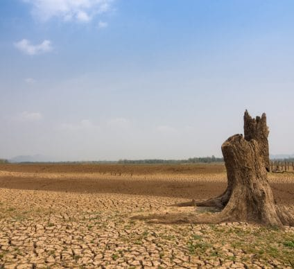 FITSEDD 2019: A forum to rethink climate change in Africa© 24November/Shutterstock