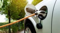 SOUTH AFRICA: Eskom negotiates import conditions for electric cars© Zapp2Photo/Shutterstock