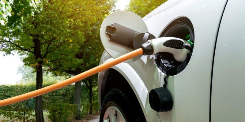 AFRIQUE DU SUD : Eskom négocie les conditions d'importation des voitures électriques©Zapp2Photo/Shutterstock