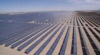 Solar Africa 2019 : la saison 6 se prépare au Kenya©lightrain/Shutterstock