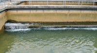 KENYA : Nanchang Foreign lance la construction d'une usine d'eau potable à Kimugu © Khai9000Pictures/Shutterstock