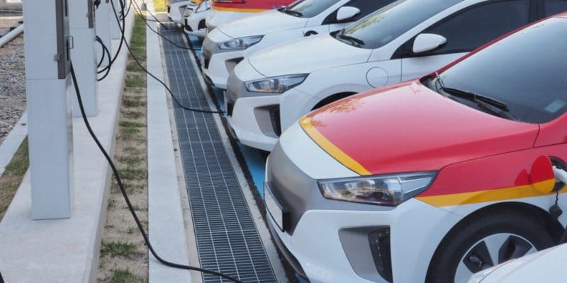 ÉGYPTE : le gouvernement veut développer l'industrie des voitures électriques©sungsu han/Shutterstock
