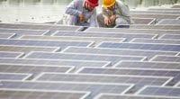 MALAWI: JCM issues tender for 20 MW solar park construction ©Jenson/Shutterstock