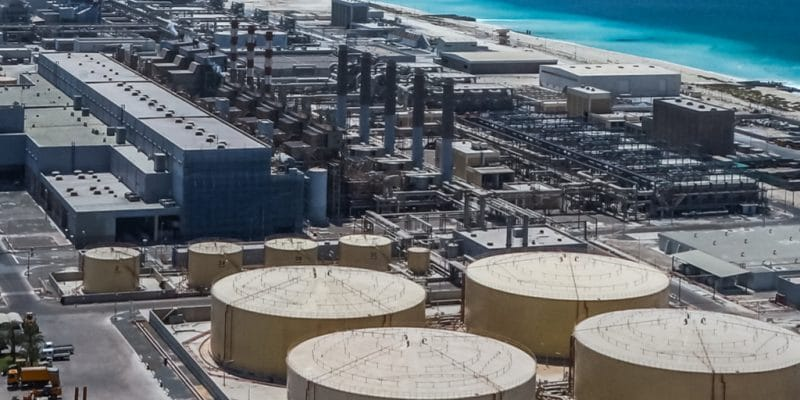 EGYPT: State allocates $75 million for two desalination plants in SCZone©/Shutterstock