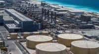 ÉGYPTE : l'Etat alloue 75 M$ pour deux usines de dessalement dans la SCZone©Stanislav71/Shutterstock