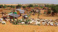 MALI : Africa GreenTec installe un mini-grid solaire conteneurisé à Fanidiama©Africa GreenTec
