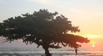 Coast-Libreville-Gabon © Xavier Boulenger Shutterstock
