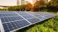 ZIMBABWE: DPA activates 466 kWp solar mini grid for Econet Wireless©asharkyu/Shutterstock