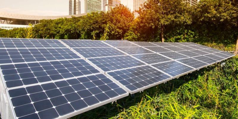 ZIMBABWE : DPA met en service un mini-grid solaire de 466 kWc pour Econet Wireless©asharkyu/Shutterstock