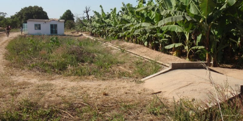 Irrigation Senegal © Xavier Boulenger - Shutterstock