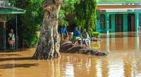 LIBERIA: Emergency action against massive floods©Vadim PetrakovShutterstock