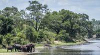 AFRIQUE AUSTRALE : Sadc et Usaid s'allient pour l'eau transfrontalière ©PACO COMO/Shutterstock