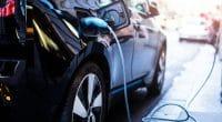 ÉGYPTE : les constructeurs convoitent le marché local des voitures électriques©guteksk7/Shutterstock