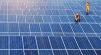 AFRIQUE : un réseau de professionnels de l'énergie solaire voit le jour©Jen Watson/Shutterstock