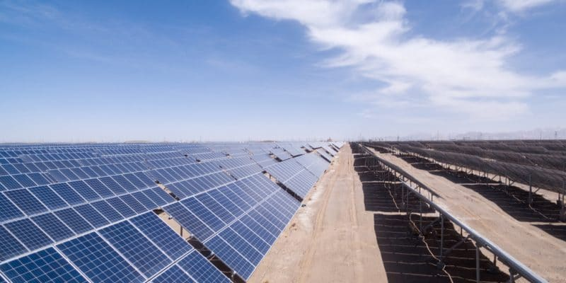 EGYPT: Schneider Electric and its partners connect solar park in Sharm el Sheikh©lightrain/Shutterstock