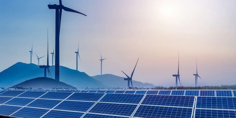 ÉGYPTE : les énergies renouvelables atteignent une capacité de 6000 MW ©hrui/Shutterstock