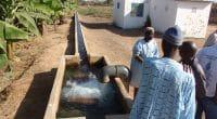 KENYA : le projet d'irrigation du cours inférieur de Nzoia est enfin mis en route©BOULENGER Xavier/Shutterstock