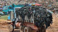 ÉGYPTE : le complexe militaro-industriel s'allie à BlueMac pour gérer les déchets©Jaggat Rashidi/Shutterstock