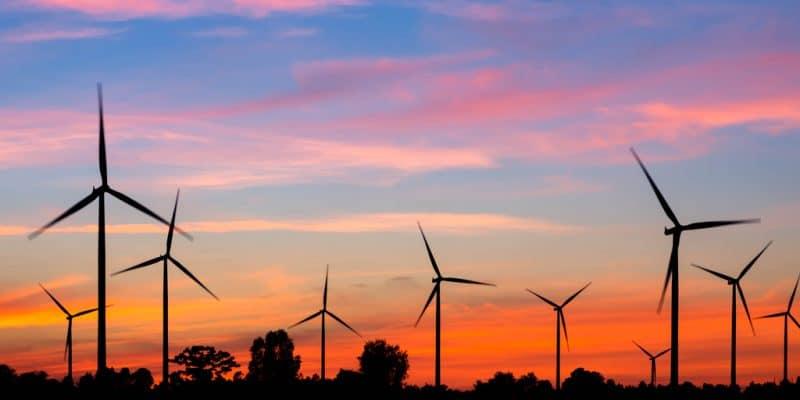 AFRIQUE DU SUD : Globeleq Africa rachète à tour de bras des centrales à EnR©De/Shutterstock