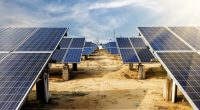 ÉGYPTE : Scatec Solar met en service sa deuxième centrale solaire de 65 MW à Benban©hxdyl/Shutterstock