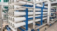 ÉGYPTE : SepraTek va installer une usine de fabrication de membranes de dessalement©ETAJOE/Shutterstock