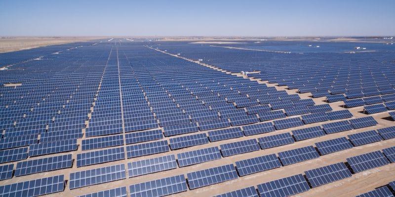 TUNISIA: TerniEnergia will open Tozeur power plant by end-June 2019©lightrain/Shutterstock