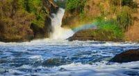 UGANDA: Popular opposition to dam construction near Murchison Falls©Oleg Znamenskiy/Shutterstock