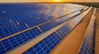 NAMIBIE : Alten et ses partenaires mettent en service le parc solaire de Mariental©Jen Watson/Shutterstock