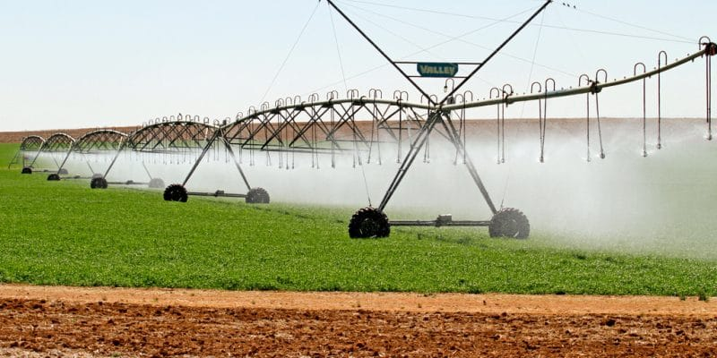 NIGERIA: Federal government procures nine irrigation systems for two States ©MartinMaritz/Shutterstock