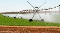 NIGERIA : le gouvernement fédéral fournit neuf systèmes d'irrigation à deux États©MartinMaritz/Shutterstock