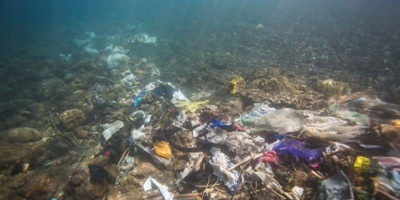 AFRIQUE DU SUD : bientôt un programme de recherche sur les déchets plastiques©Fedorova NataliiaShutterstock