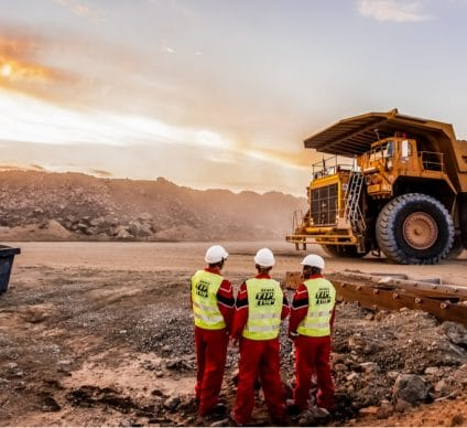 CAR: Parliament accuses 4 Chinese mining companies of ecological disaster©Sunshine SeedsShutterstock