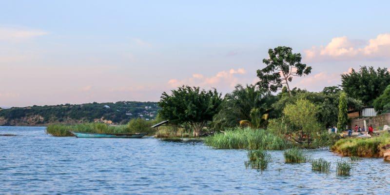 BASSIN DU CONGO : vers une gestion intégrée des fleuves partagés qui protège la forêt©Robin NieuwenkampShutterstock