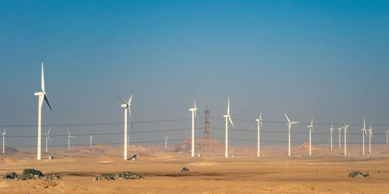 ÉTHIOPIE : le gouvernement s'apprête à mettre en service deux projets d'ENR©Octofocus2/Shutterstock