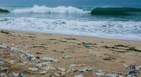 COTE D'IVOIRE : en marche vers l'objectif «Zéro plastique sur les plages»©Neja HrovatShutterstock