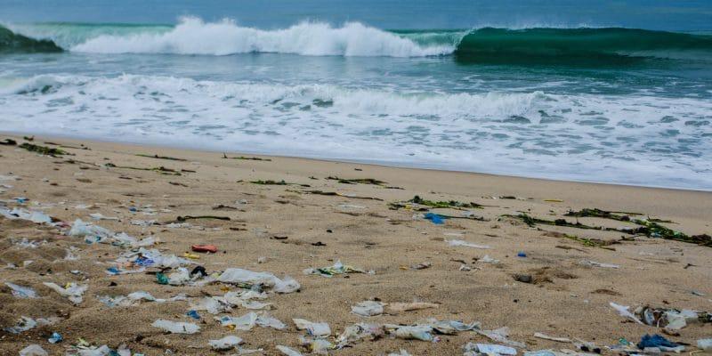 AFRIQUE : le Réseau africain des déchets marins se réunit en avril à Port Elizabeth©Neja Hrovat/Shutterstock