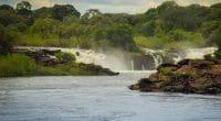 ZAMBIA: Western Power allocates $500 million to Ngonye hydroelectric project©Tatsiana Hendzel/Shutterstock