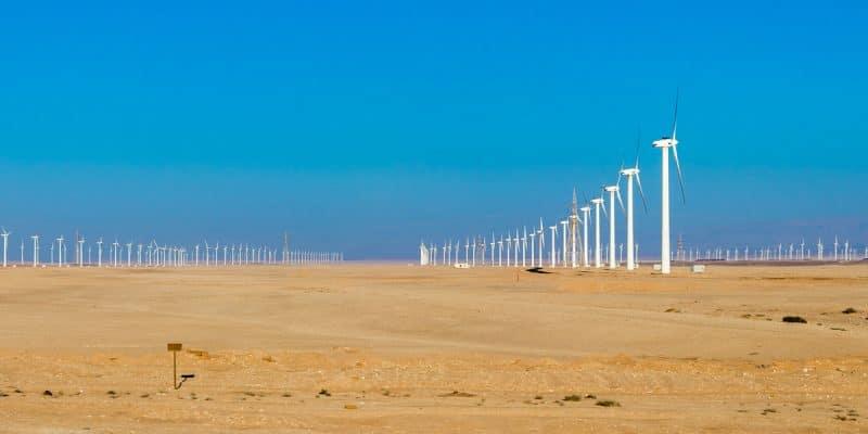KENYA : le gouvernement inaugure le plus grand projet éolien d'Afrique©Andrej PrivizerShutterstock
