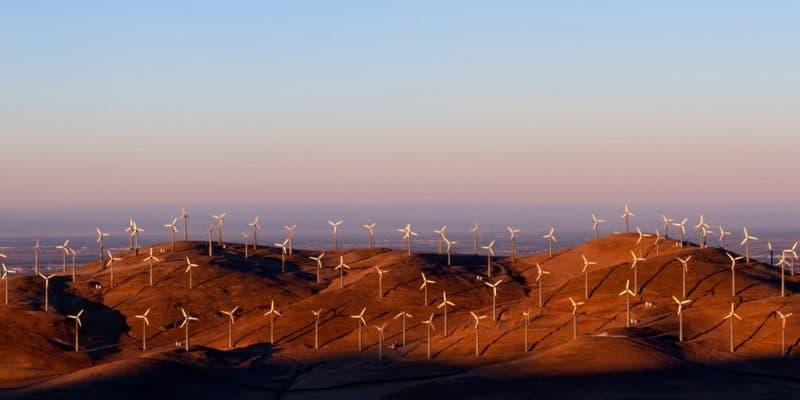 ÉGYPTE : des IPP veulent fournir 2150 MW d'énergie éolienne dans les années à venir©sumikophoto/Shutterstock