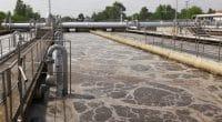 ÉGYPTE : plus 191 M$ du gouvernement pour le traitement des eaux usées d'Alexandrie©Peter Gudella/Shutterstock
