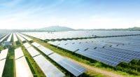 BOTSWANA : le gouvernement va lancer un appel d'offres pour 100 MW d'énergie solaire© Wang An Qi/Shutterstock