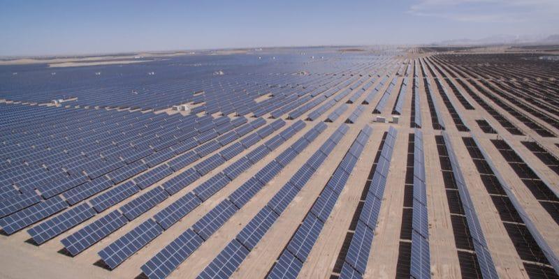 ÉGYPTE : trois IPP présélectionnés pour le projet solaire de Zaafarana de 50 MW©lightrain/Shutterstock