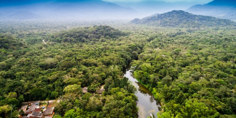 WEST AFRICA: Two environmental protection programmes underway©Gustavo FrazaoShutterstock