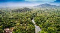 AFRIQUE DE L'OUEST : lancement de deux programmes de protection de l'environnement©Gustavo FrazaoShutterstock