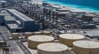 EGYPT: Several companies peering into desalination market©Stanislav71/Shutterstock