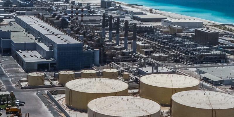 ÉGYPTE : plusieurs entreprises lorgnent sur le marché des usines de dessalement©Stanislav71/Shutterstock