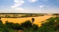 MALI: Government launches national plan to save Niger River ©Homo CosmicosShutterstock